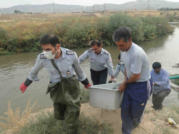 جسد نوجوان ۱۷ ساله در رودخانه شطیط شوشتر کشف شد