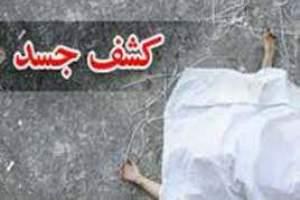 جزئیات کشف جسد یک زن از سطل زباله در مشهد