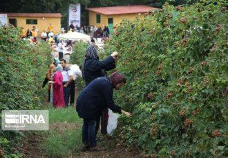 ایجاد زیرساخت های گردشگری کشاورزی در کهگیلویه و بویراحمد کلید خورد