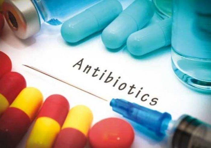 کهگیلویه و بویراحمد صاحب کارخانه تولید آنتی بیوتیک های دامی میشود