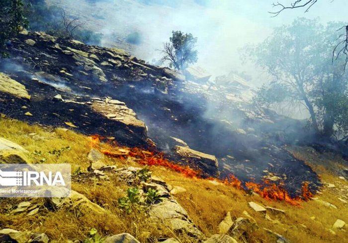 جنگل ها و مراتع پیچاب باشت طعمه آتش شد