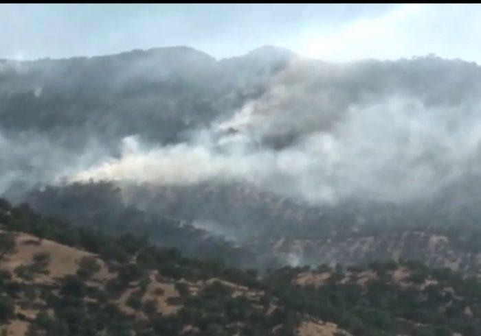۳۰ هکتار از مراتع دنا دچار آتش سوزی سطحی شد