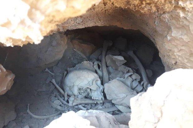 کشف اسکلت انسان در میامی/ احتمال قتل و اختفای جنازه وجود دارد