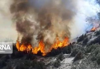 مدیر منابع طبیعی: آتش به ۵۳۵هکتار از جنگلها و مراتع گچساران خسارت زد