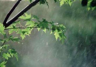 کشاورزان کهگیلویه و بویراحمد شرایط بارش های امسال را در نظر بگیرند